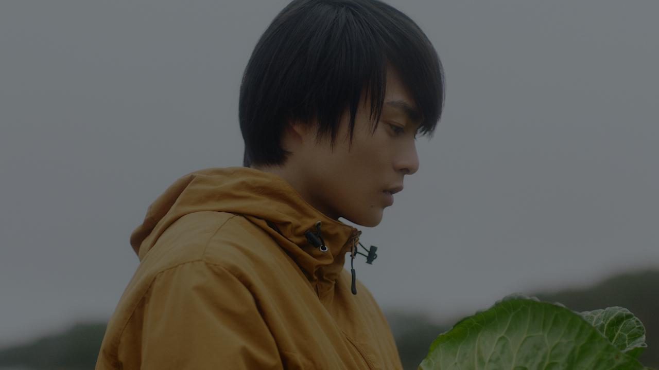 共済 cm ja JA共済CM2020の出演俳優は誰?有村架純や浜辺美波と共演! ライフスタイル・ラボ